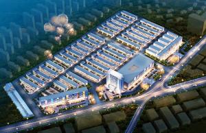 泰山国际采购中心